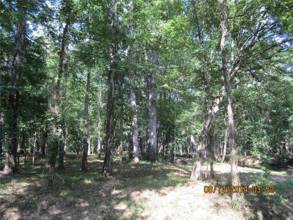 1865 County Rd. 99, Gaylesville, AL 35973 Photo 36