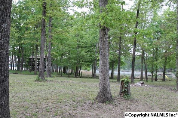 1322 County Rd. 136, Cedar Bluff, AL 35959 Photo 10