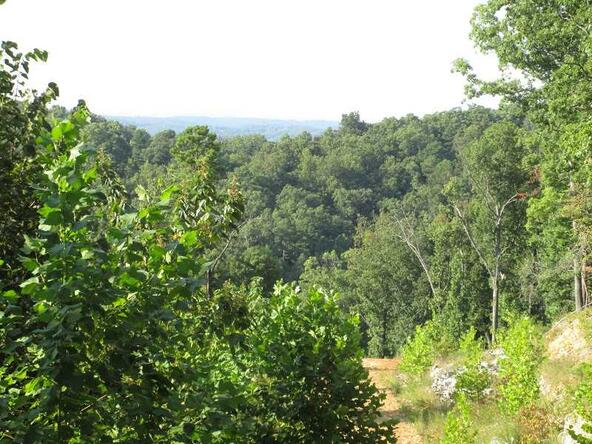 102 County Rd., Eureka Springs, AR 72632 Photo 17