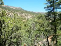 Home for sale: 0 River Dr., Jemez Springs, NM 87025