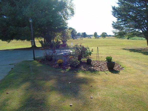 3629 Cr 50, Rogersville, AL 35652 Photo 30