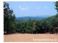 Home for sale: Lot 172 Yellowtop Mountain Estates, Bostic, NC 28018
