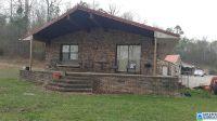 Home for sale: 519 Crawfish Ln., Ragland, AL 35131