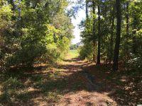 Home for sale: 1993 Muddy Creek Rd., Hemingway, SC 29554