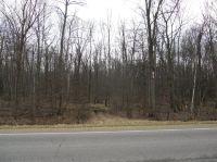 Home for sale: 0 Ormes Rd., Vassar, MI 48768