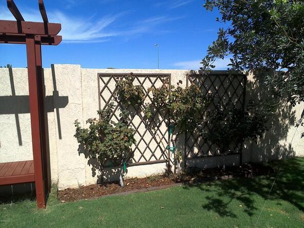 5239 W. Cinnabar Avenue, Glendale, AZ 85302 Photo 52