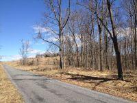 Home for sale: 2 Ac. Longview Meadow Dr., Buena Vista, VA 24416