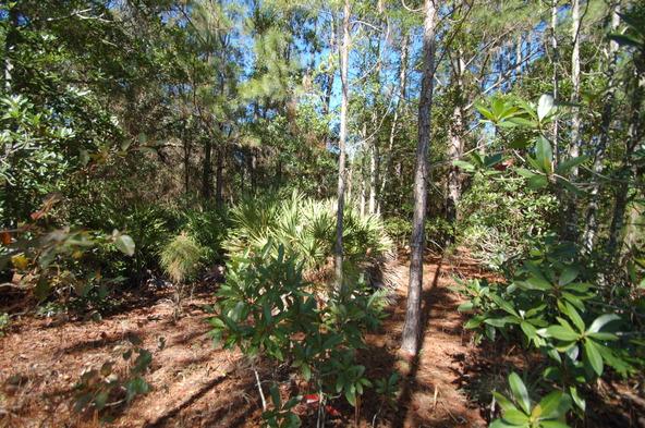 Greengrove Bv, Lot 12, Clermont, FL 34711 Photo 3