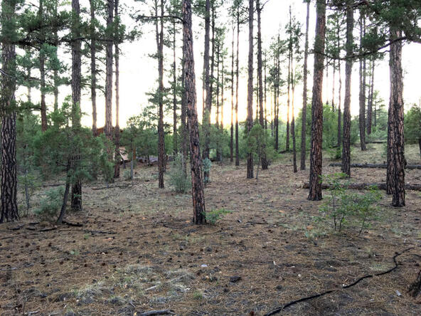 300 W. Creekwood Ln., Show Low, AZ 85901 Photo 2