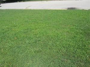 664 West Pearl, Aurora, MO 65605 Photo 1