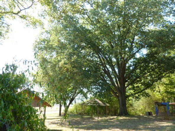 3221 County Hwy. 25, Guntersville, AL 35976 Photo 5