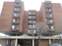 Home for sale: 7830 West North Avenue, Elmwood Park, IL 60707