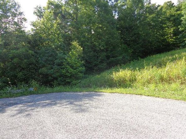 7950 Fisher Rd., Primm Springs, TN 38476 Photo 2