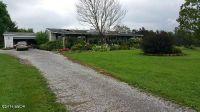 Home for sale: 558 Raum Rd. Corner, Golconda, IL 62938