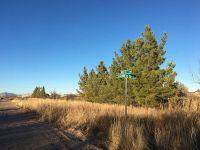 Home for sale: 1100 E. Novez St., Marfa, TX 79843