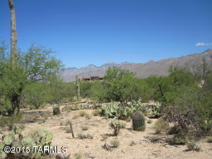 3470 N. Soldier Trail, Tucson, AZ 85749 Photo 22