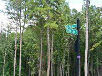 Home for sale: Lot 14 Sun Point Ct., West Union, SC 29696