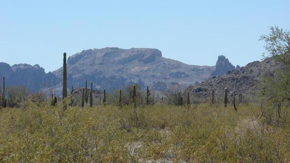3xx N. 557th Avenue, Tonopah, AZ 85354 Photo 19