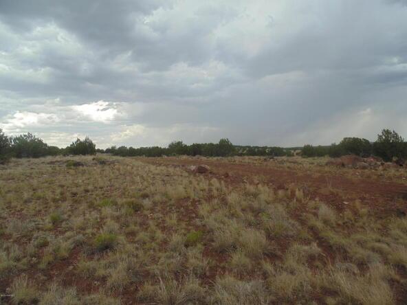 1368 Greenhorn Rd., Seligman, AZ 86337 Photo 12