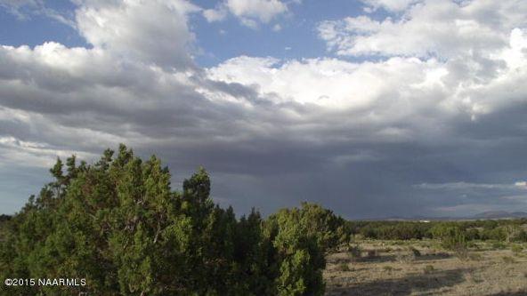 2140 W. Quiet Antelope Ct., Williams, AZ 86046 Photo 3