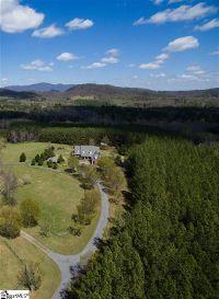 Home for sale: 484 Pierce Rd., Landrum, SC 29356