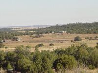 Home for sale: Lot 41 Off Of Fs 163, Clay Springs, AZ 85923
