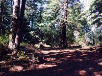 Home for sale: Ranch Rd., Pescadero, CA 94060