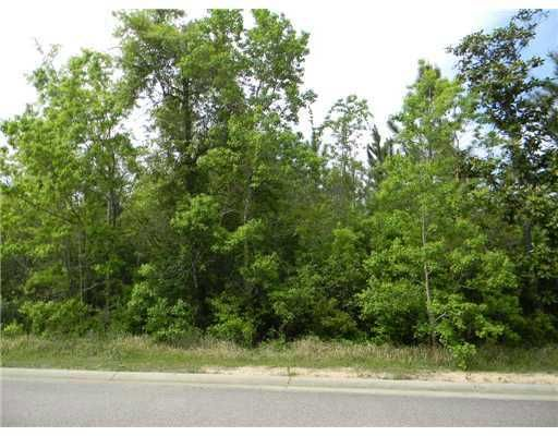 Lot 7 Treelawn, Gulfport, MS 39503 Photo 2