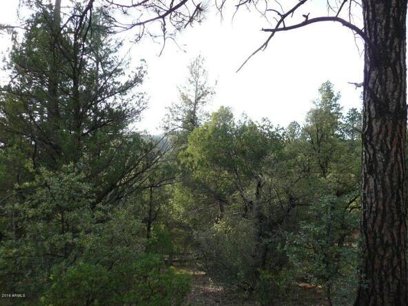 8b N. Chamberlain Trail, Young, AZ 85554 Photo 31