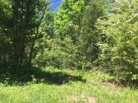Home for sale: 212.1 Ac Old Hwy. 56, Silver Point, TN 38582