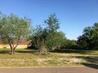 Home for sale: 425 N. Kika de la Garza Blvd., La Joya, TX 78560