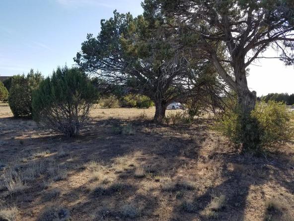 13511 N. Warpaint Pl., Prescott, AZ 86305 Photo 7