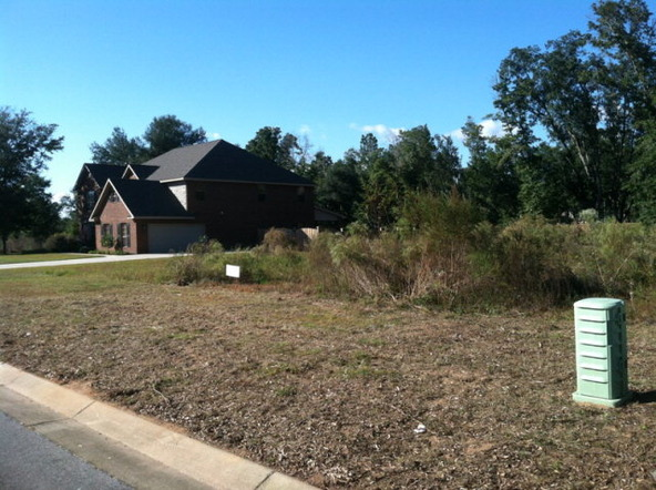 70 Sugar Loop, Foley, AL 36535 Photo 1