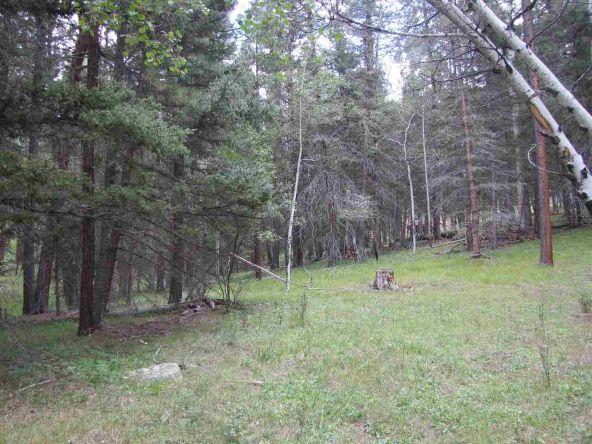 119 W. Pecos Canyon Estates Rd., Tererro, NM 87573 Photo 27