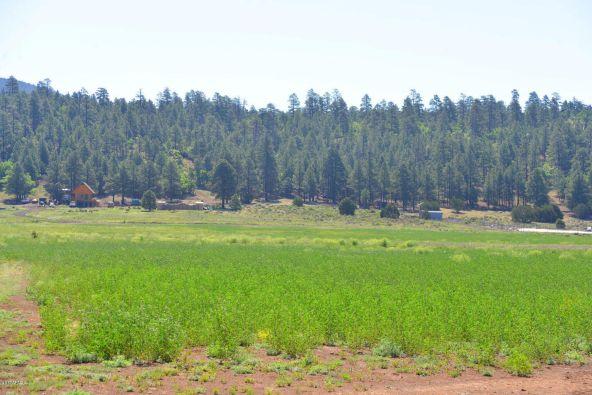 6701 N. Rain Valley Rd., Flagstaff, AZ 86004 Photo 5