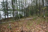 Home for sale: Lot 3 Lake Mildred Rd., Newbold, WI 54501