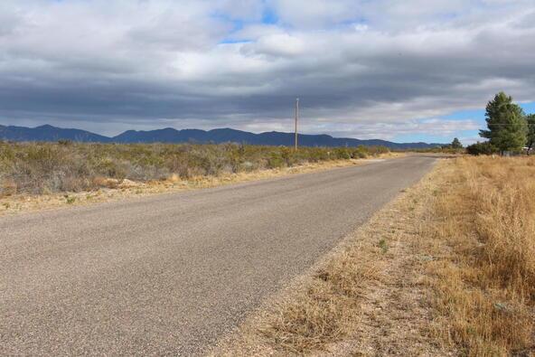 2453 E. Silver Strike Trail, Tombstone, AZ 85638 Photo 8