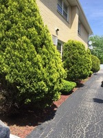 Home for sale: 8649 Lawler Avenue, Burbank, IL 60459