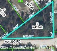 Home for sale: 12428 Maleo Rd., Weeki Wachee, FL 34614