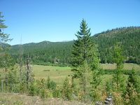 Home for sale: Nna Riley Creek Rd., Priest River, ID 83856