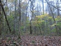 Home for sale: 87 Land By Lakes Rd., Cadiz, KY 42211
