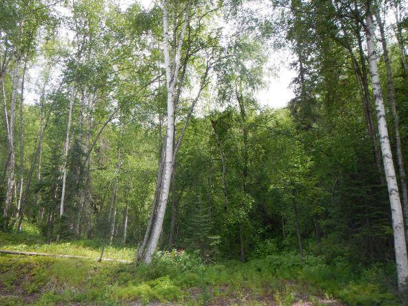 6165 S. Headrick Cir., Big Lake, AK 99652 Photo 1