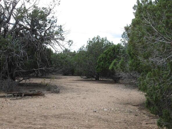 11100 W. Rawhide Trail, Skull Valley, AZ 86338 Photo 24