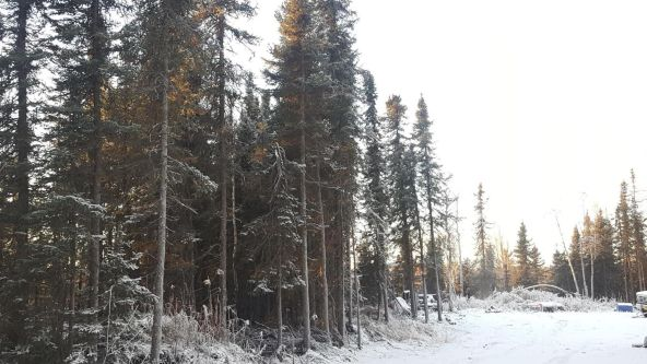 14613 E. Wilderness Rim, Willow, AK 99688 Photo 12