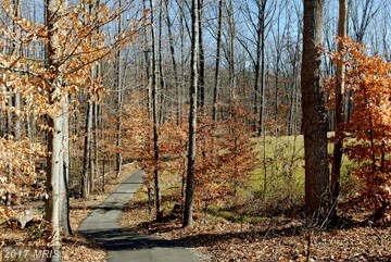 Lees Command Blvd., Fredericksburg, VA 22407 Photo 10