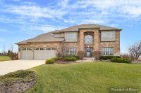 Home for sale: 6009 Audrey Avenue, Yorkville, IL 60560