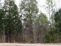 Home for sale: 0 White Bluff Rd., White Bluff, TN 37187