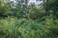 Home for sale: Lot 9 Hickory Knoll, Tiffin, IA 52340