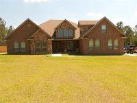Home for sale: 4089 Sunshine Ridge Ct., Molino, FL 32577