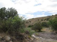 Home for sale: Thorn Jakobsen, Clifton, AZ 85533